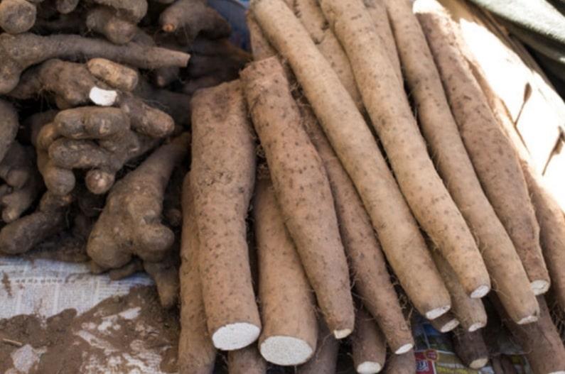 Fufu during pregnancy: cassava